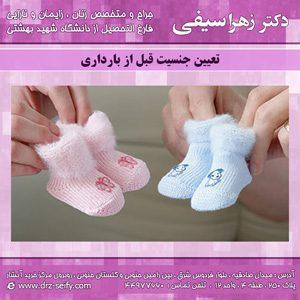 تعیین جنسیت قبل از بارداری